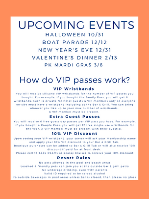 VIP flyer back.png