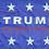 Thumbnail: ★Donald Trump Flag★