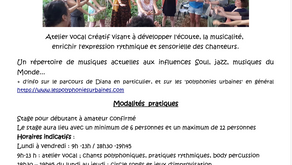 STAGE CIRCLE SONG - polyphonies, chants du Monde - 2-6 AOUT 2021- HERISSON
