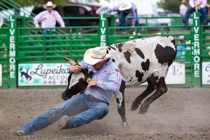Steer Wrestler