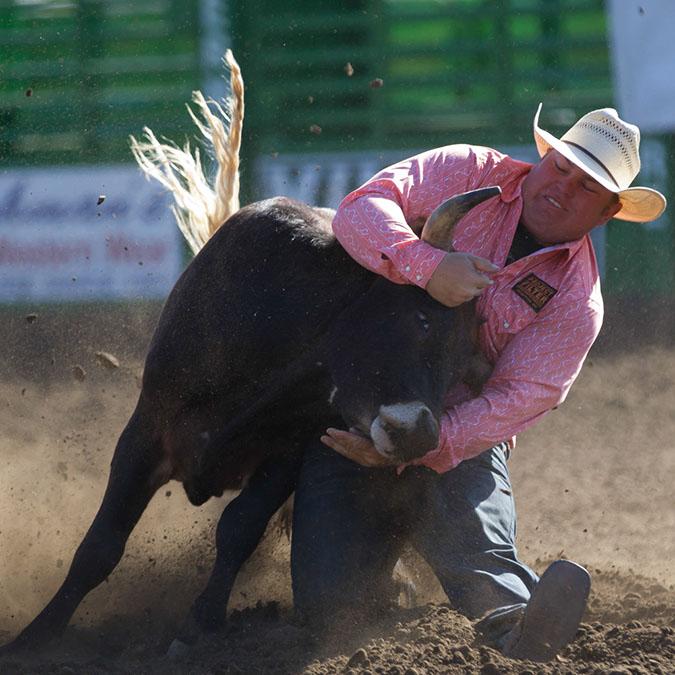 Steer Wrestler!