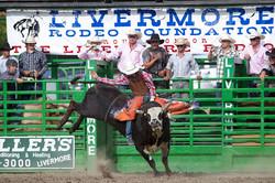 Ride that Bull!