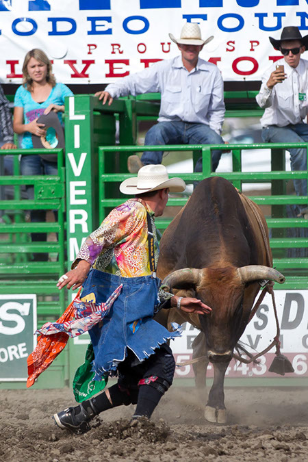 Bull Fighter Earning his Pay!