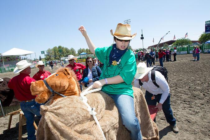 Lil' Pardner Entrant Riding a Bull