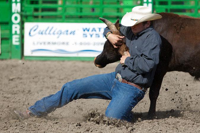 Steer Wrestling!