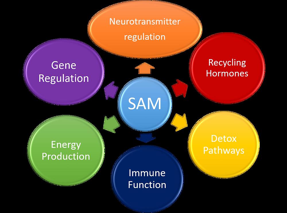 SAM Functions