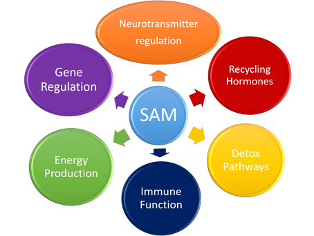 MTHFR and Depression   Individualizing Natural Wellness Series - Part 1
