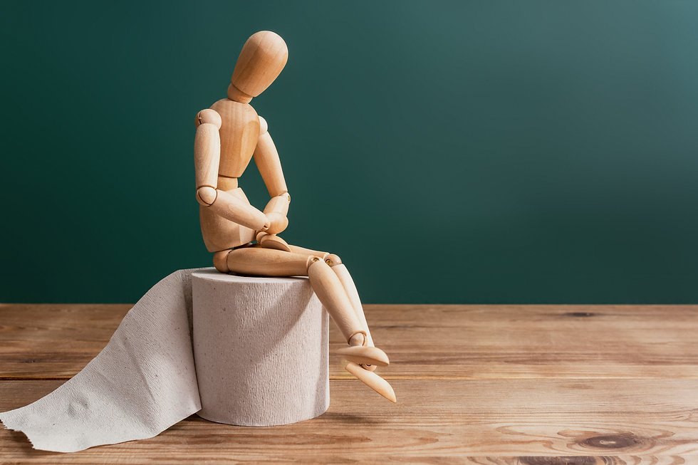 Wooden figure sit on a roll of toilet pa