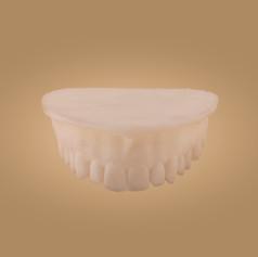 Zahnmodell - Ansicht vorne