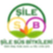 silelogo_edited.jpg