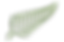 FAVPNG_new-zealand-leaf-silver-fern-plan