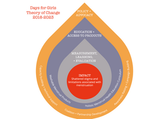 Days For Girls Theory Of Change