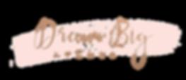DreamBig_Logo_Final_LG.png