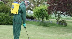 Lantra Pesticide Spray Simply Safety.jpg