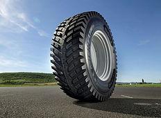 roadbib-1-069o-sml-800x533.jpg