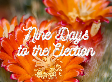 nine days to the election