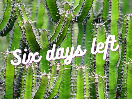Six Days Left