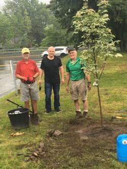 St. Ignatius Centennial Tree Planting