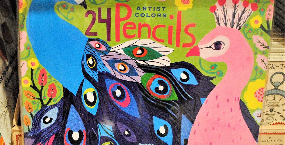 Artist colors pencils