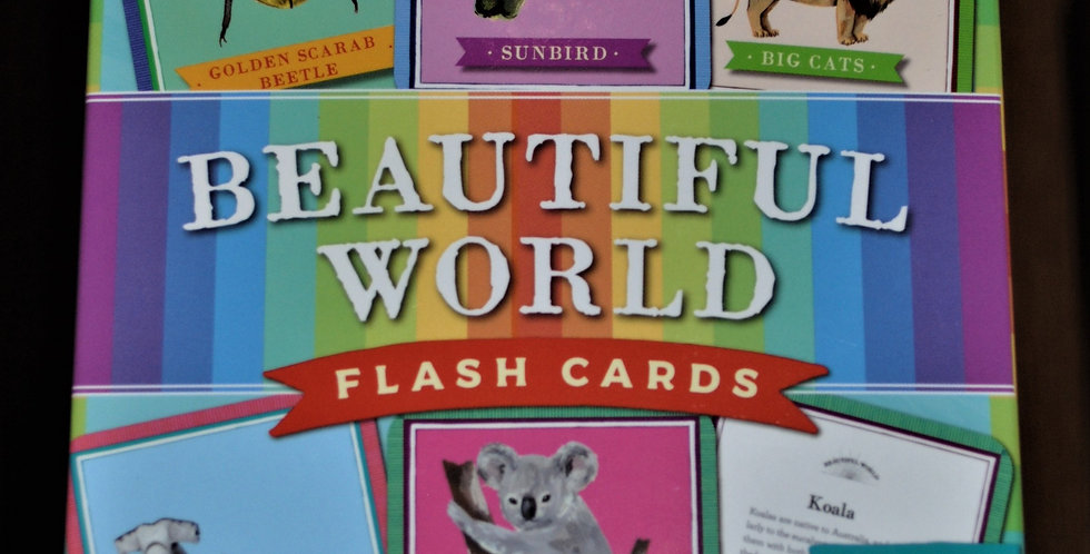 Beautiful World flash cards