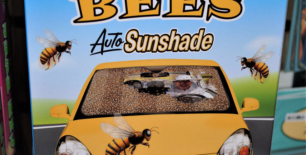 Auto sunshade