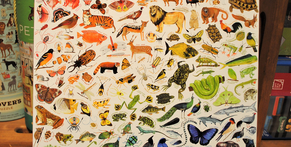 Puzzle - A Rainbow World
