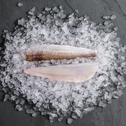 San Antone Whiting Fillets Butterflied 13-15cm 2.5KG