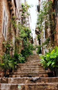 Things to See in Dubrovnik   Dubrovnik A