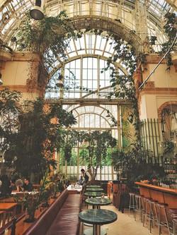Best of TheViennaBlog -Your Vienna Summe