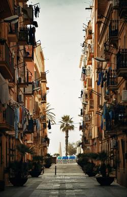 Concrete Jungle, Barcelona, Spain – Song