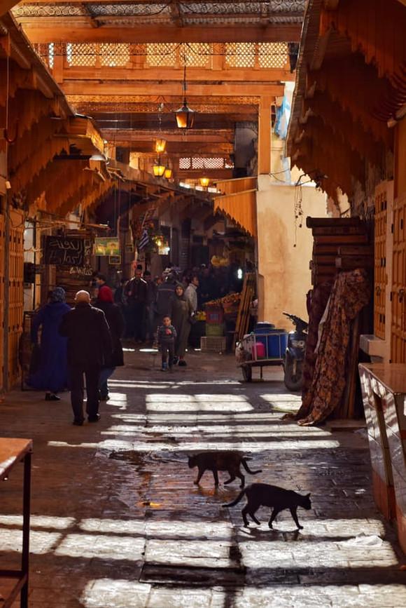 2019.gada brauciens uz Maroku