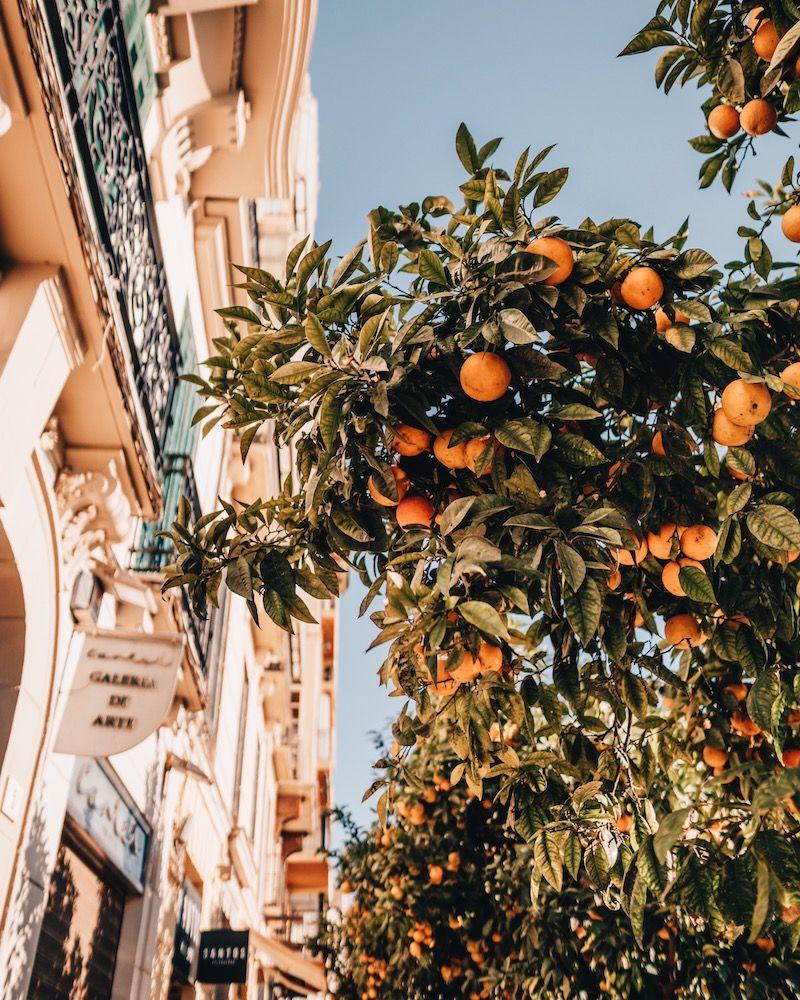 Malaga Sehenswürdigkeiten, Aussichtspunk