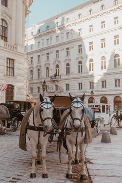 Vienna Instagram and Photography Guide -
