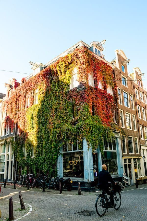 20 Beautiful Streets in Amsterdam That Y
