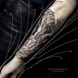 татуировка дракона, в стиле графика, на