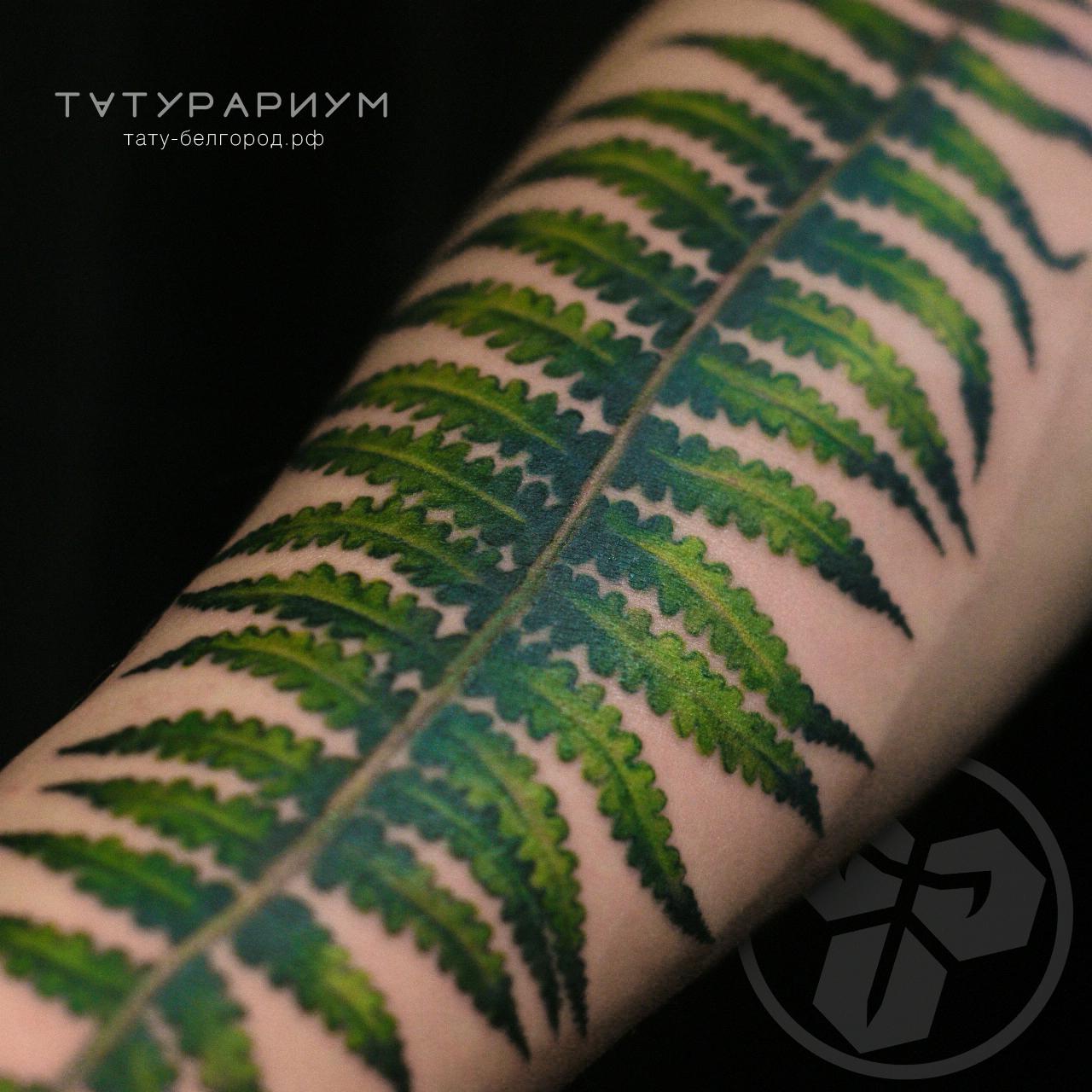 фото татуировки папаротник цветной реали