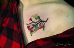 Фото татуировки, сакура розовая на ключи