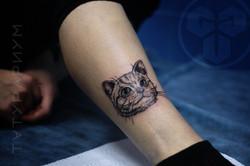 Фото татуировки, котенка на ноге у девеш