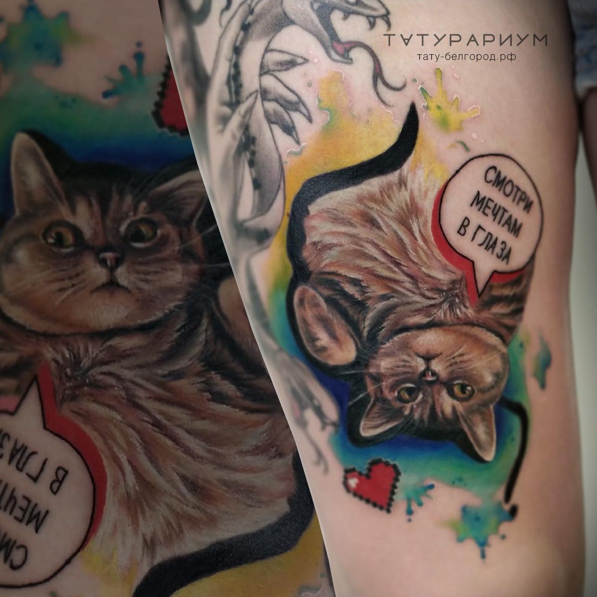 фото татуировки, котик на ноге у девушки