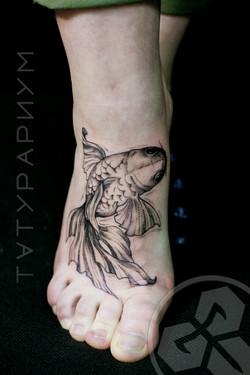 Фото татуировки, золотая рыбка на подьем