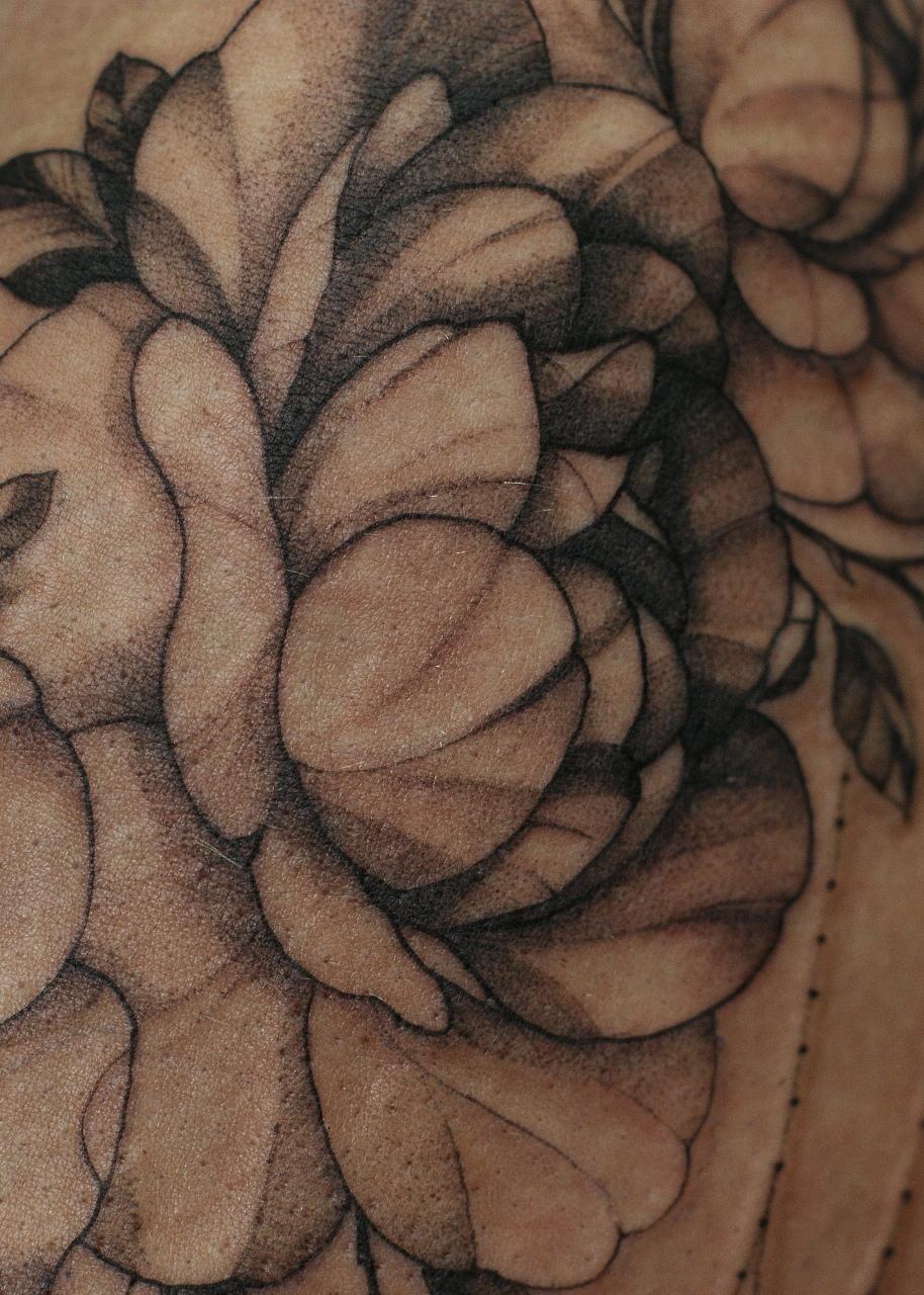 татуировка пионы, в стиле графика, на пл