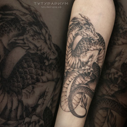 Фото татуировки изящный дракон в стиле графика на предплечий у девушки, черно белая татуировка, тату