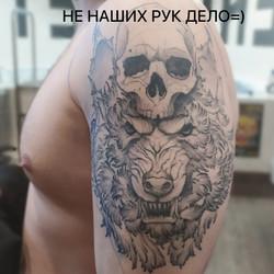 фото татуировки волка с черепом на плече у парня (перекрытие), в графике, тату-салон татур
