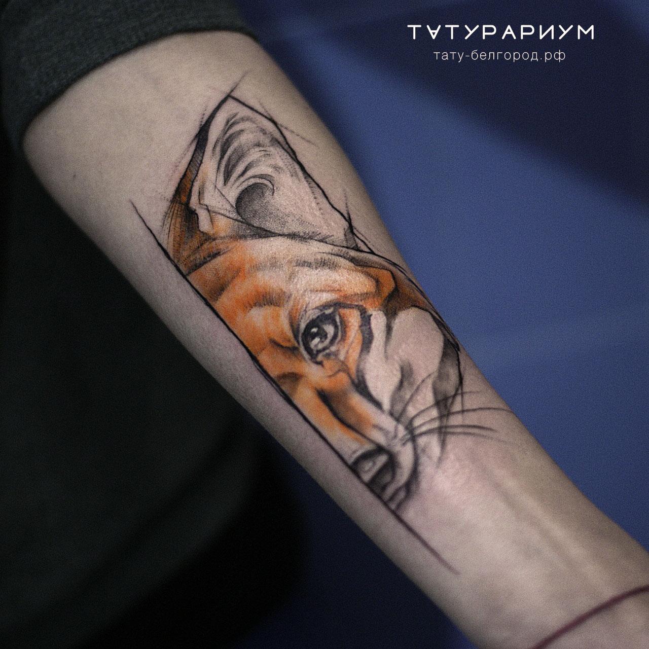 Фото татуировки, лисица на предплечии у