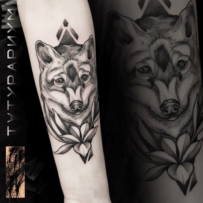 Фото татуировки, волк на женском предпле