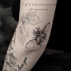фото татуировки, жук олень на плече у де