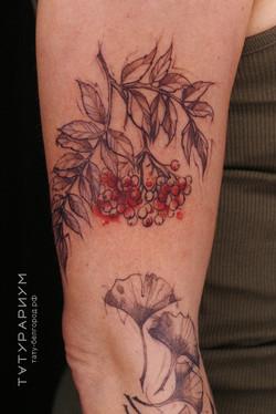 татуировка веточки рябины, в стиле графи