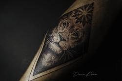 Фото татуировки, лев в ромбе на ноге у д