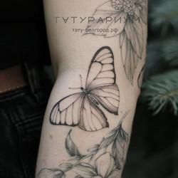 Фото татуировки, бабочка в черно сером с