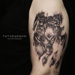 Фото татуировки, тигр прорывающий плоть